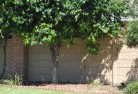 Whitfield QLD Barrier wall fencing 5