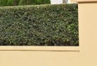 Whitfield QLD Decorative fencing 30